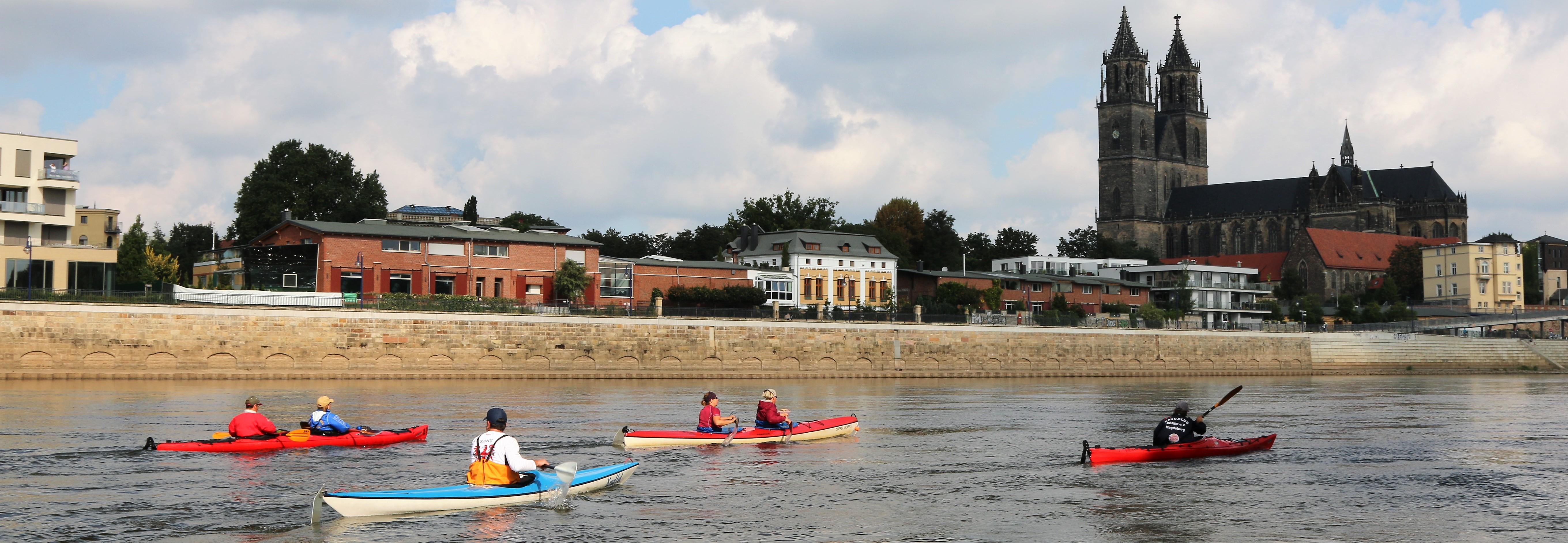 Kanuten auf der Elbe entlang der Domstadt Magdeburg